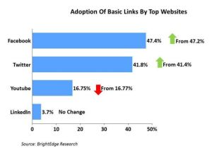 Basic-Link-Adoption